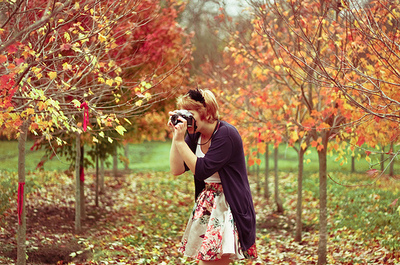 autumn, beautiful, camera, colorful, colors