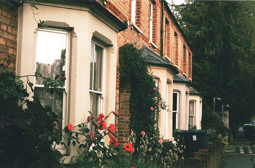 autumn, building, exterior, flower, flowers, garden, house, interior, nature, patio, spring, street, summer, vintage, winter