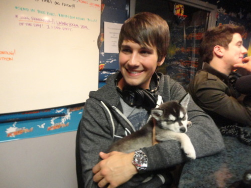 aww, big time rush, cute, fox, fox maslow, james maslow, logan henderson, smile