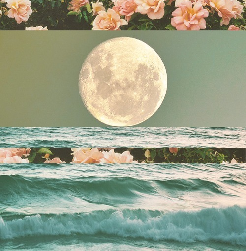 background, floral, flowers, moon, night, pattern, sea, sky, water, wave