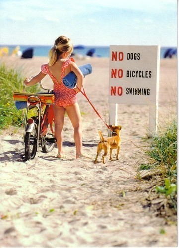 badass, beach, biking, child, dog, girl, summer, sun, swimming