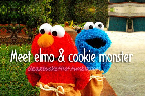 bag, before i die, bucket list, cookie, cookie monster, dearbucketlist, elmo, grass, meet, monster, sack