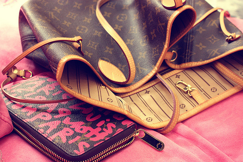 bag, cute, louis vuitton, purse, style, wallet