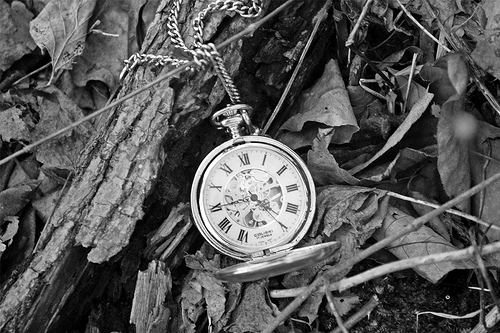 b&w, black & white, black and white, clock, cute, nature, old, photo, photography, place, vintage