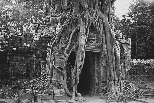 b&w, black & white, black and white, dark, darkness, door, landscape, nature, photo, photography, place, temple run enterance