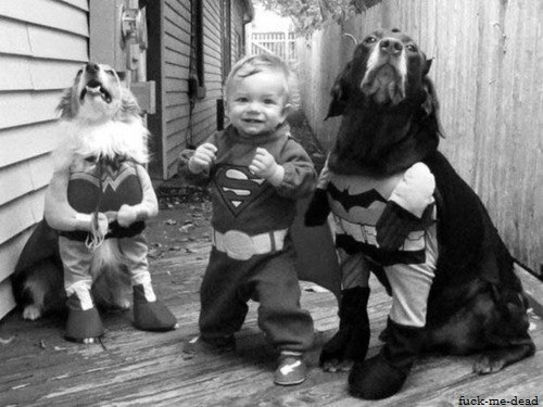 batman, black and white, child, cute, dog, superhero, superman, wonderwoman