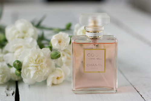 beautiful, blossom, blossoms, chanel, coco
