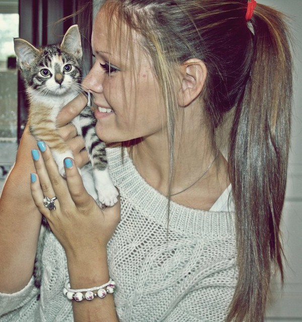 beautiful, blue, cat, cute, fashion