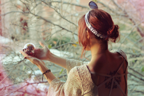 beautiful, bokeh, branch, cute, fashion