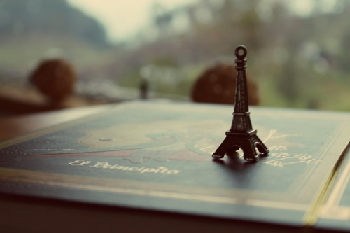 http://s3.favim.com/orig/46/beautiful-book-cute-eiffel-tower-flowers-Favim.com-423821.jpg