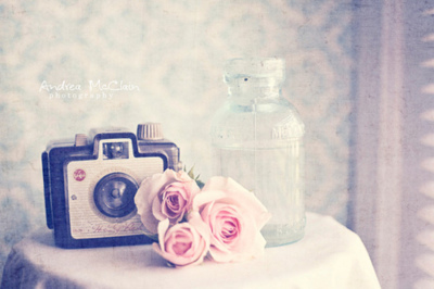beautiful, camera, cute, flowers, photo