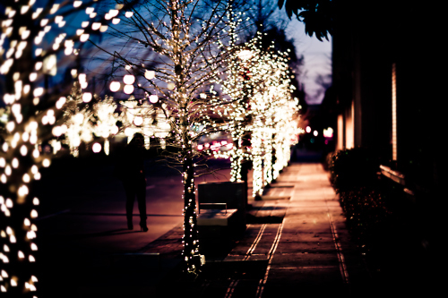 beautiful, lights, photography