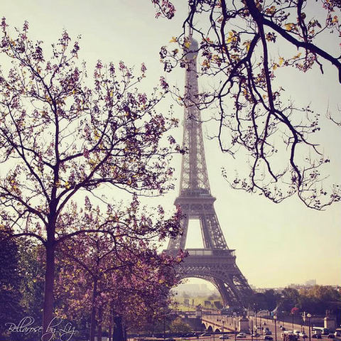 beautiful, love, paris, photo, photography