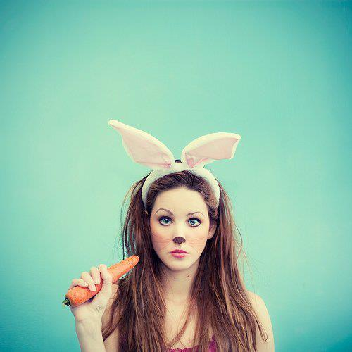 beautifull, big ears, bunny, carrot, cute