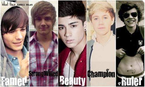 beauty, champion, famed, harry, liam