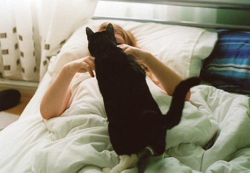 bed, cat, cute, girl, photography