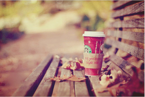 bench, coffee, hot chocolate, leaves, park
