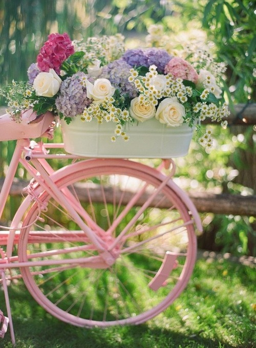 bici, colors, cool, cute, fashion, floral, flower, green, nature, old, photography, pink, purple, rose, vintage, white, woman