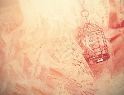bird, cage, lace, necklace, pink