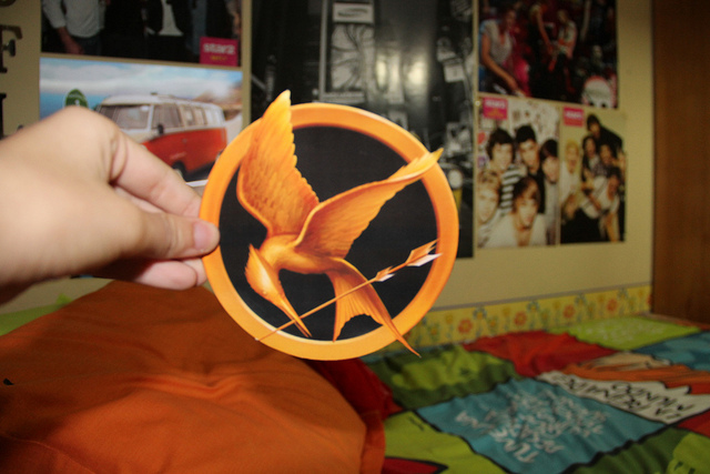bird, decoration, hunger games, juegos del hambre, mcfly