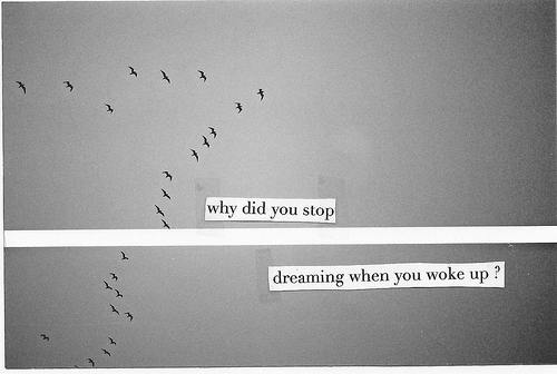 birds, dream, dreaming, dreams, feelings, morning, night, stop, text, typography, wake up, why