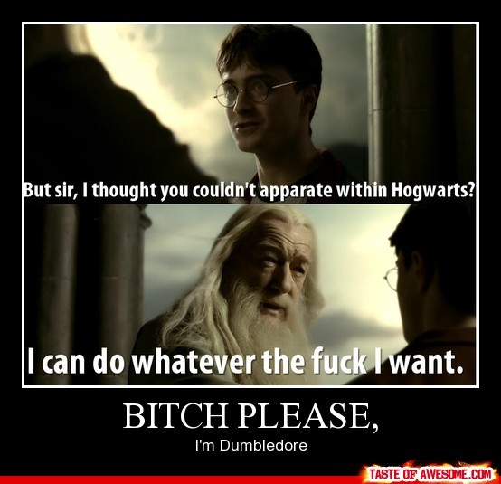 bitch please harry potter, funny, harry potter, hogwarts