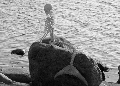 black and white, bones, mermaid, ocean, rock