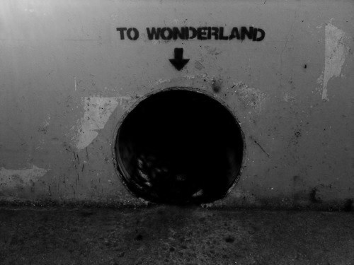 black and white, dark, fuck, hipster, indie, lol, text, truth, tunnel, wonderland