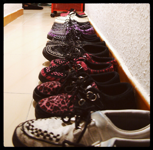 black, creepers, leopard, pink, psychobilly