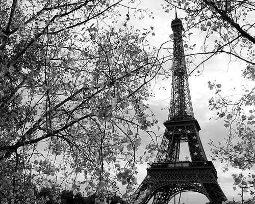 black, eiffel tower, paris, vintage