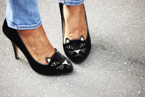 black heels, cats, fashion, heels, jeans