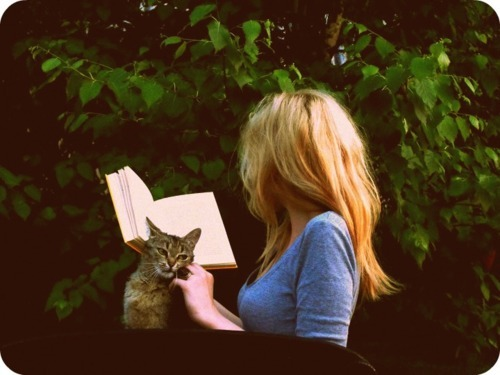 blonde, book, cat, girl, read