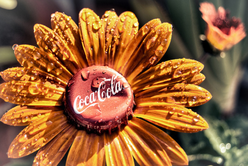 bottlecap, coca-cola, cool, creative, daisy, dew, flower, inspirational, photo, photography, pretty, red, summer, sunny, sunshine