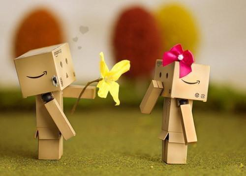 box, boy, couple, danbo, flower