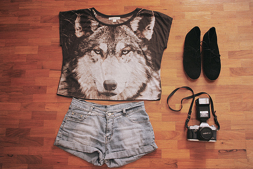 camera, denim, fashion, husky, love, shoes, shorts