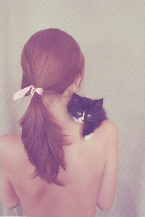 cat, cats, girl, hair, pet