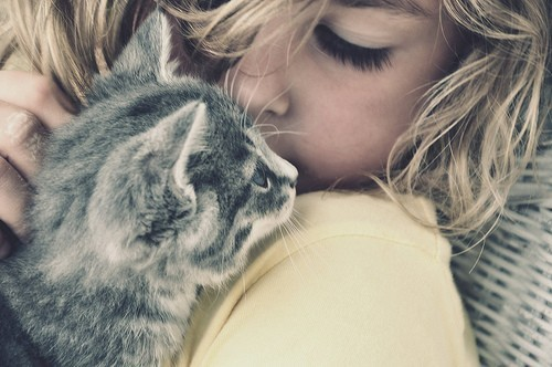 cat, cute, girls, love, pets