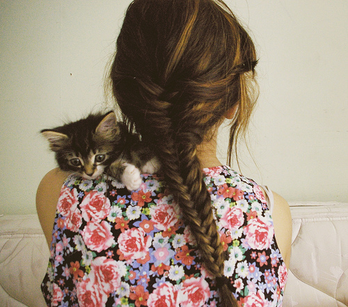 cat, dress, flower, flowers, girl, hair, kitten, nieznane, photo, photography