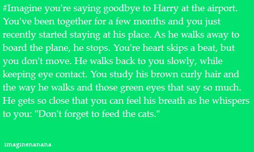 cats, harry styles, imagine, liam payne, louis tomlinson