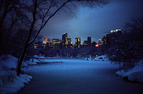 city, lights, nature, snow