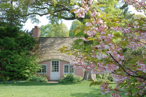 cottage, country, flowers, home, house