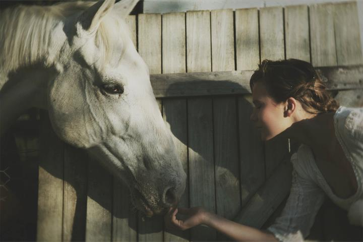 courtney krawec, courtneykrawec, free, horse, love