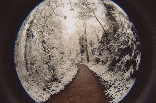crystal, photography, round, snow, tree