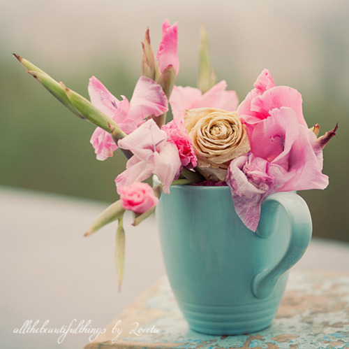 cup, flowers, lovely, pastel, pink