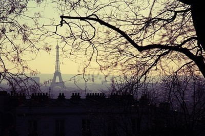 cute, eiffel tower, paris, sky, tree