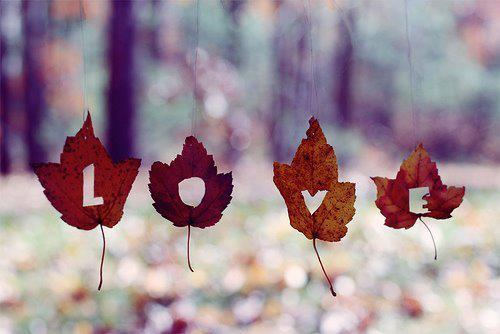 cute, leaf, leaves, life, love, people, quotes