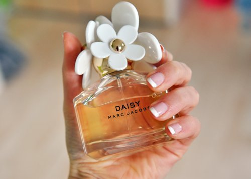 daisy, fashion, perfume, photography