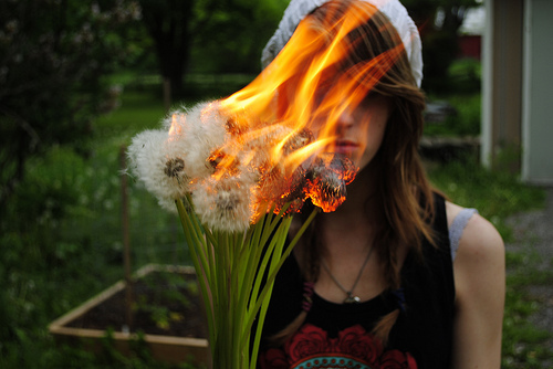 dandelion, fashion, fire, flames, flower, girl, inspiration, nature