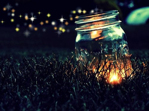 dream, fantasy, gras, image, jar, light, love, magic