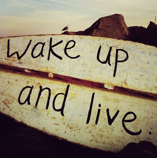 dream, life, live, text, wake up